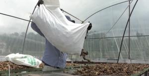 CENTRO DE EXPERIMENTACIÓN Y PRÁCTICA AGROECOLÓGICA 4