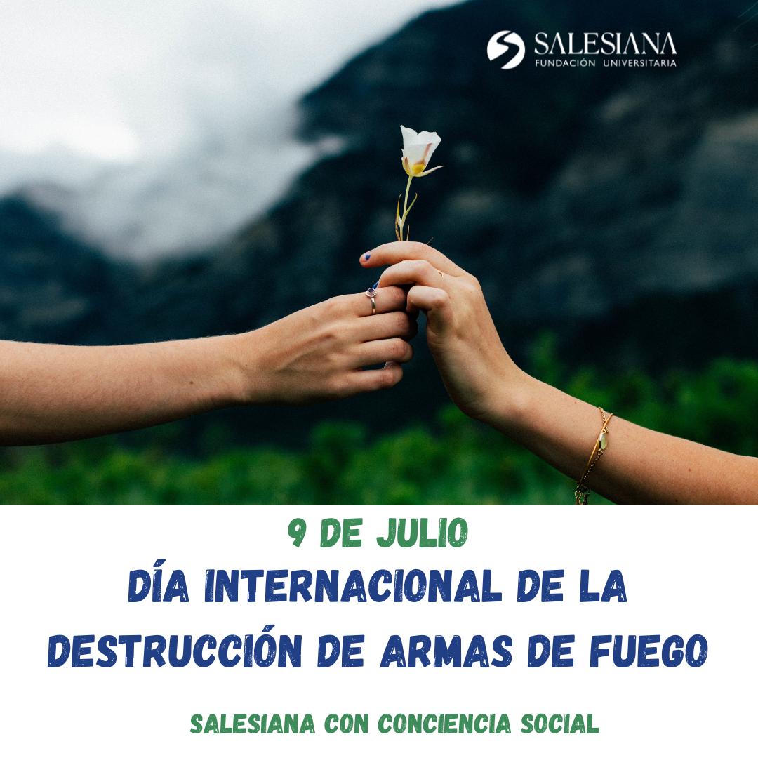 Día Internacional de la Destrucción de Armas de Fuego 8