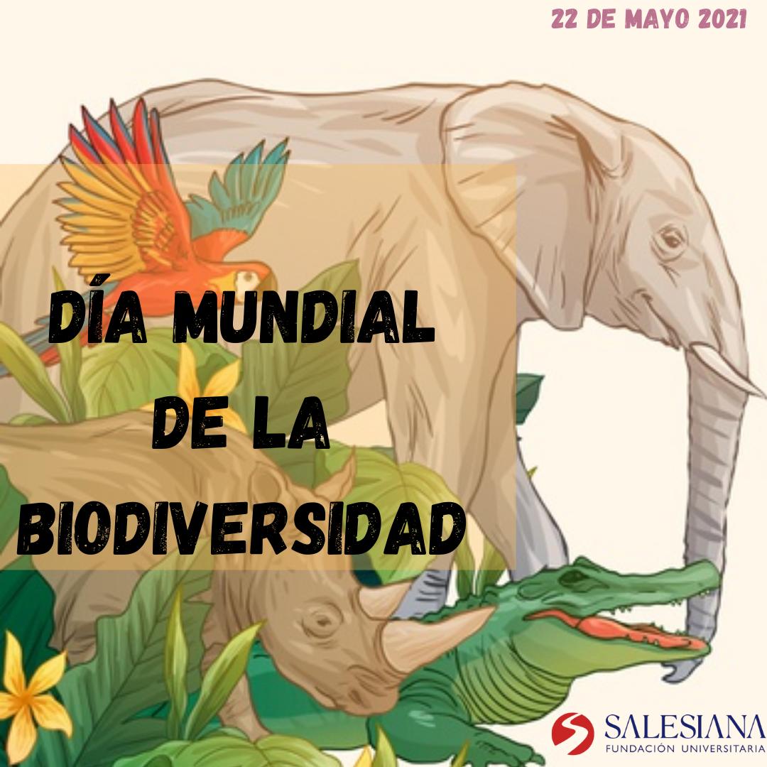 Día internacional de la biodiversidad 8