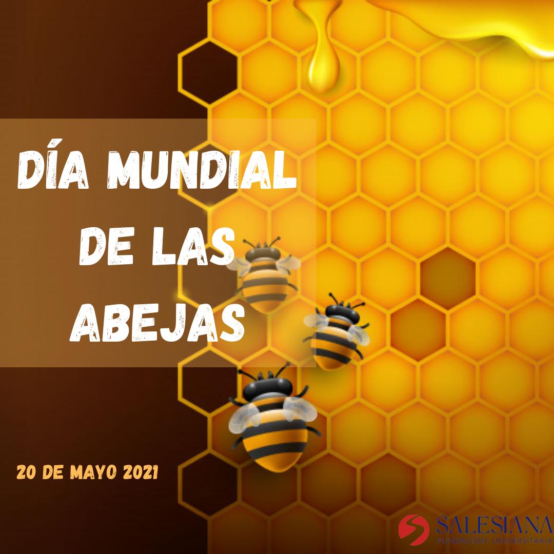 Día de las abejas 8